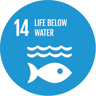 Life Below Water Icon