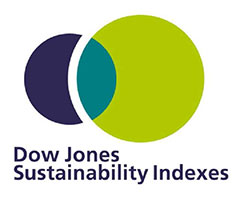 Dow Jones Sustainability Indexs