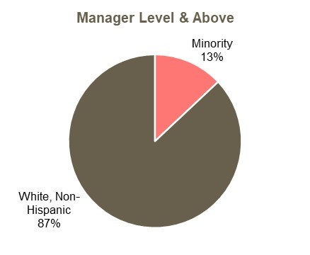 Manager level and above minority representation