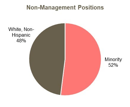 Non management positions minority representation