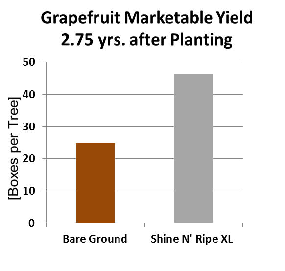 graph grapefruit marketable yield 2.75 years after planting