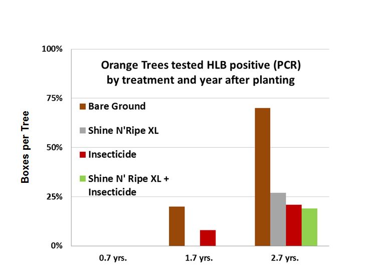 graph orange trees tested hlb positive